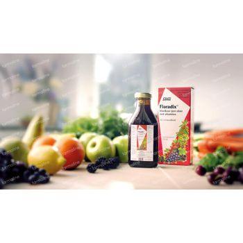 Salus Floradix Élixir de Fer 250 ml