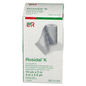 Lohmann & Rauscher Rosidal K 10cm x 5m 22202 1 stuk