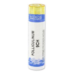 Boiron Folliculinum 9Ch Gr 1 stuk