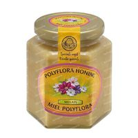 Melapi Honig Polyflora sanft 500 g
