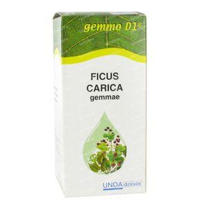 Boiron Ficus Carica Gemmo D1 125 ml