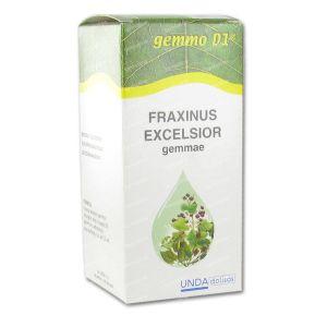 Boiron Fraxinus Excels.Gemmo D1 125 ml