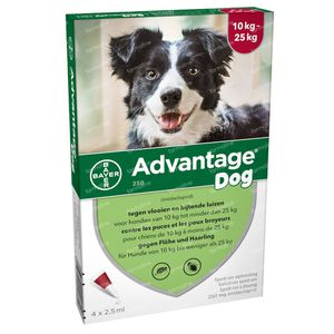 Advantage 250 Spot-On Oplossing Hond 10<25kg 4x2,5 ml