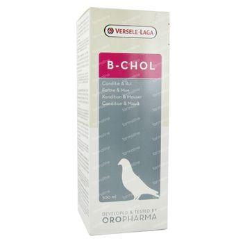B-Chol 500 ml