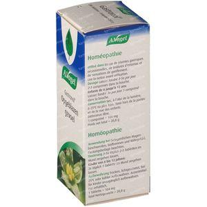 A.Vogel Gastronol 200 tabletten