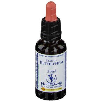 Healing Herbs Star Bethlehem 30 pièces