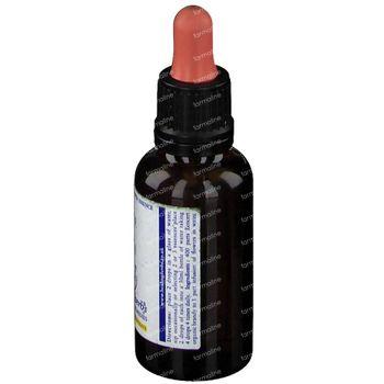 Healing Herbs Vine 30 ml