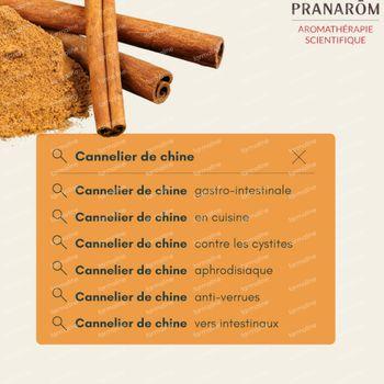 Pranarôm Huile Essentielle Cannelier de Chine 10 ml
