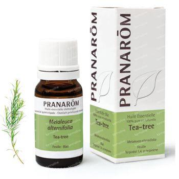 Pranarôm Tea Tree Essenzielles Öl 10 ml