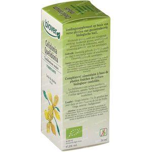 Biover Schöllkraut 50 ml