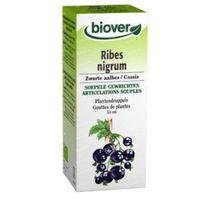 Biover Ribes Nigrum Zwarte Aalbes Tinctuur Bio 50 ml