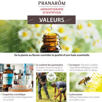 Pranarôm Essentiële Olie Citroen Bio 10 ml