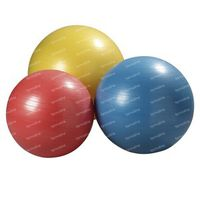 Jobri Exerswiss Ball Therapy Blauw 65cm 1 st