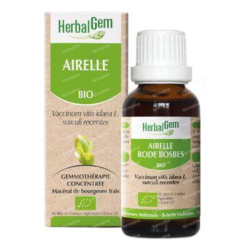 Herbalgem Airelle Macerat 50 ml