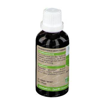 Herbalgem Aulne Macerat 50 ml
