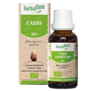 Herbalgem Zwarte Bes Maceraat 15 ml