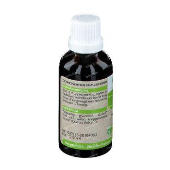 Herbalgem Chene Macerat 50 ml