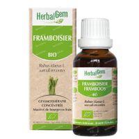 Herbalgem Himbeeren Mazerat 50 ml