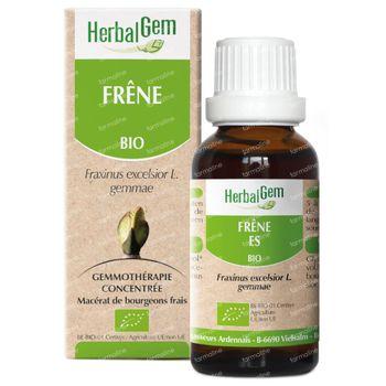 Herbalgem Frène Macerat 15 ml