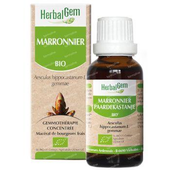 Herbalgem Marronnier Maceraat 50 ml