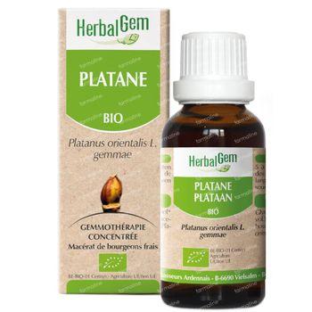 HerbalGem Plataan Maceraat 15 ml
