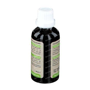 Herbalgem Ronce Macérat 50 ml