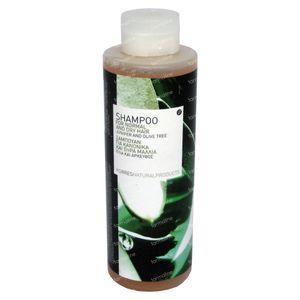 Korres Shampoo Droog Haar Olijf 250 ml