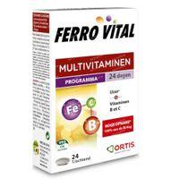 Ortis Ferro Vital 24  tabletten