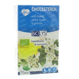 Biolys Hawthorn-Turmeric Infusion 20 g bags