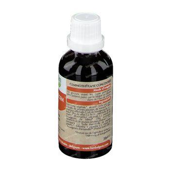 Herbalgem Cholestegem Cholesterol Complex 50 ml