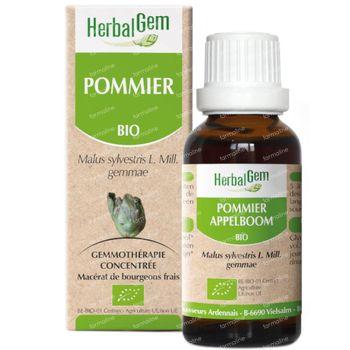Herbalgem Appelboom Maceraat 50 ml