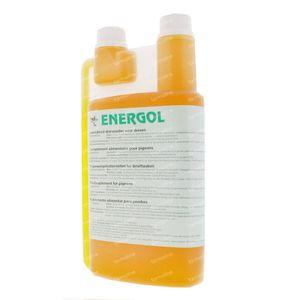 De Reiger Energol 1000 ml