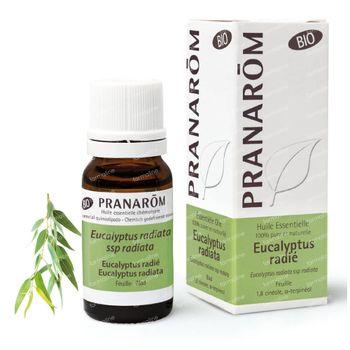 Pranarôm Eucalyptus Radiata Huile Essentielle Bio 10 ml