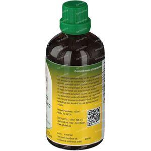 Fytobell Angelica Archangelica Ue 100 ml druppels