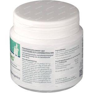 Glutagenics 260 g poeder