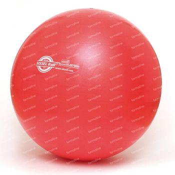 Sissel Ball Balle De Gymnastique 55cm Rouge 1 pièce