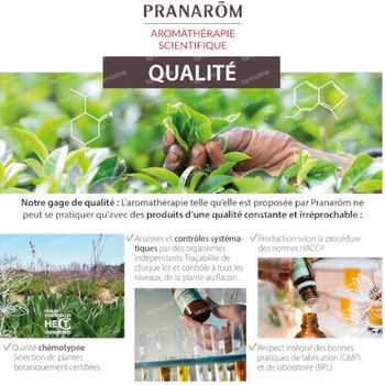 Pranarôm Huile Essentielle Eucalyptus Citronné Bio 10 ml