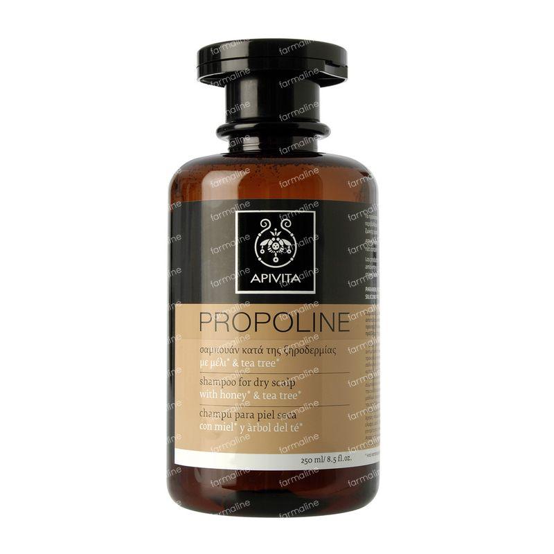 apivita shampoing pour cuir chevelu sec 250 ml bouteille vente en ligne. Black Bedroom Furniture Sets. Home Design Ideas