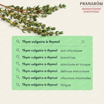 Pranarôm Huile Essentielle Thym Vulgaire à Thymol 10 ml