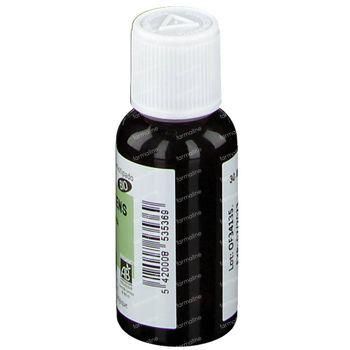 Cyprès Toujour Vert 3536 Bio Huile Essentielle 30 ml
