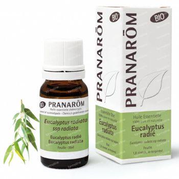 Pranarôm Huile Essentielle Eucalyptus Radiata 100 ml