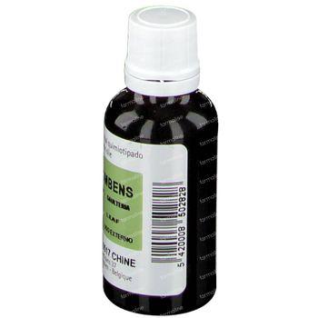 Pranarôm Wintergreen Huile Essentielle 30 ml