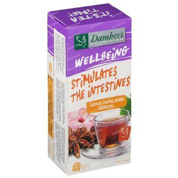 Damhert Tea Time Tee Stuhlgang 20 beutel