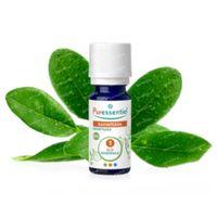 Puressentiel Ravintsara Essential Oil Bio 5 ml