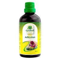 Fytobell Articulan 100 ml