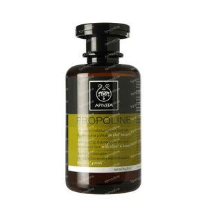 Apivita Shampoing Cheveux Secs/Deshydrates 250 ml bouteille