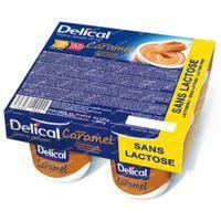 Delical Creme Dessert Hp Caramel Zonder Lactose 500 g