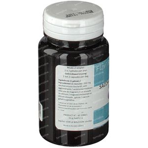 Bioholistic Holiflore Boulardii 60 capsules