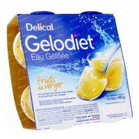 Delical Gelodiet Eau Gélifiée Sucrée Fruits Du Verger 480 g
