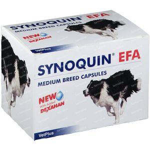 Synoquin Efa Chien Medium Breed 120 capsules